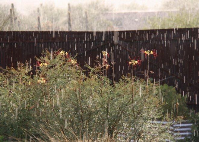 Sunshower! At least it started raining...