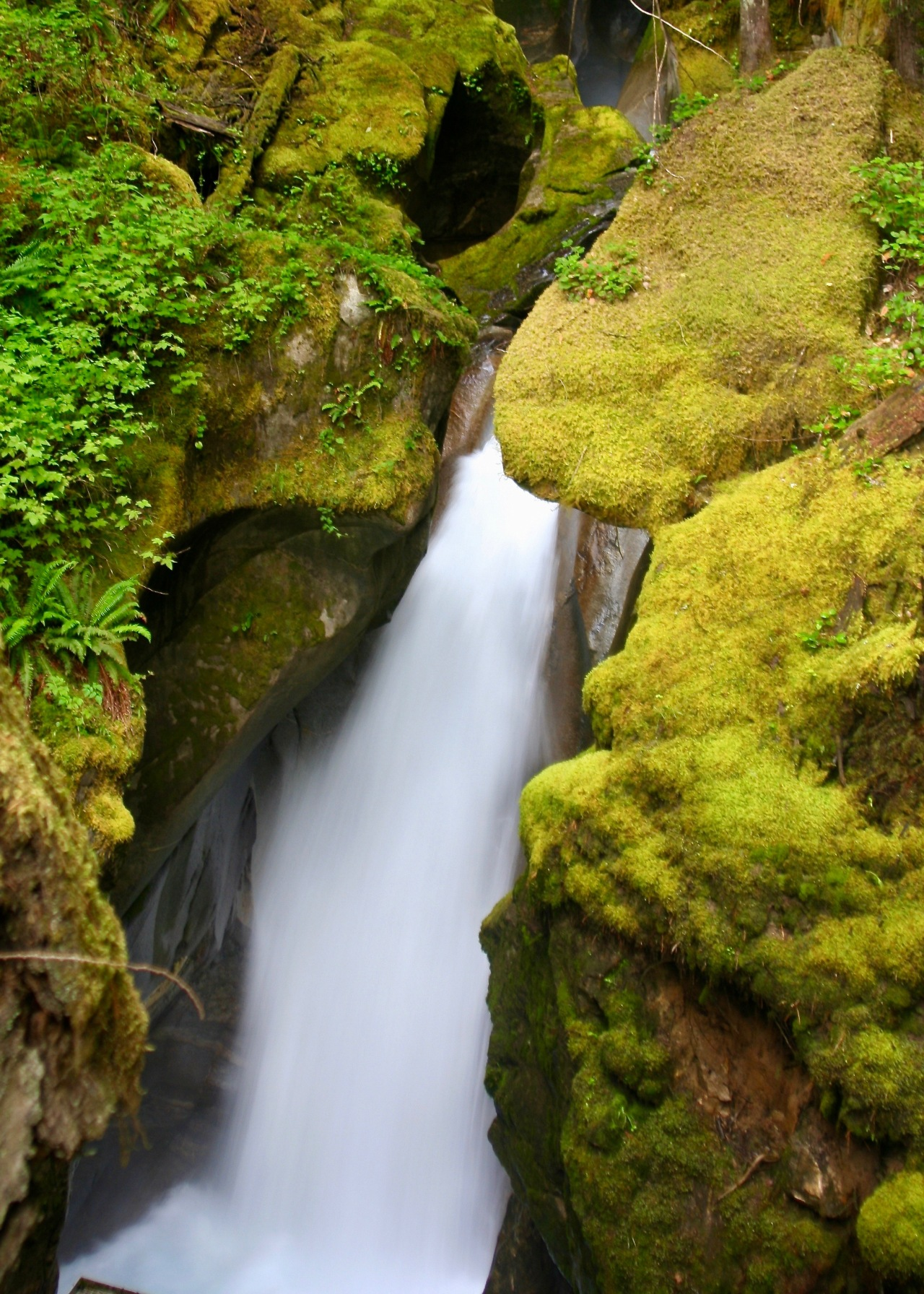 Waterfall2 Cascades NP WA 08-2008