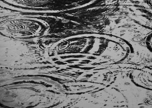 Rain Ripples 2