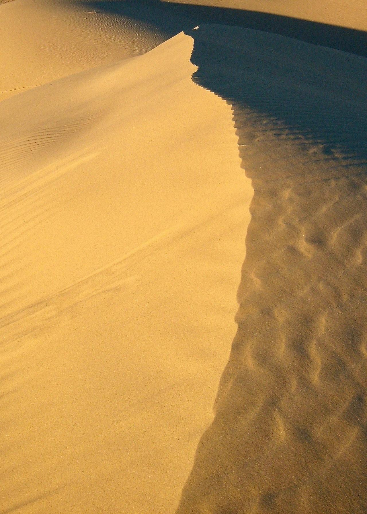 Dune Monahans Sandhills SP TX 10-2007