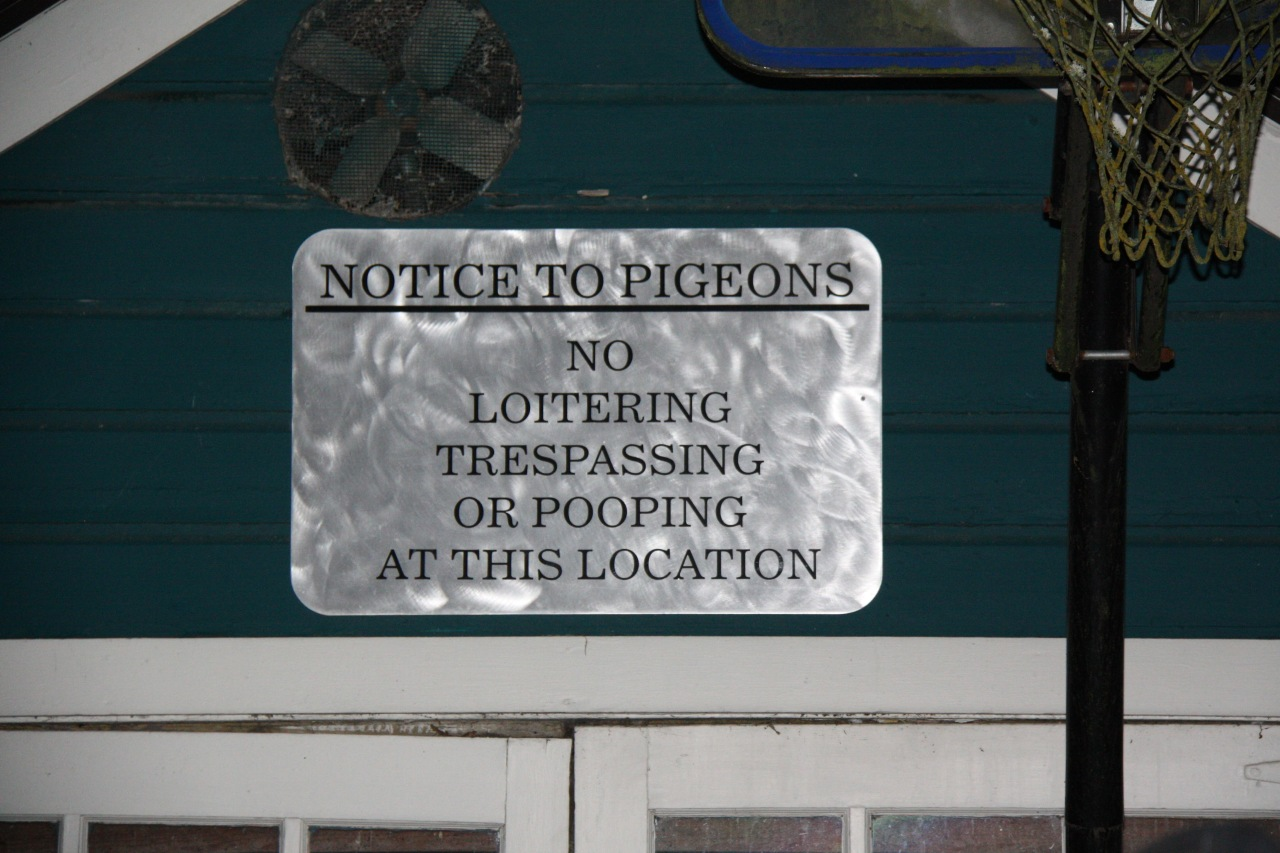 Notice to Pigeons