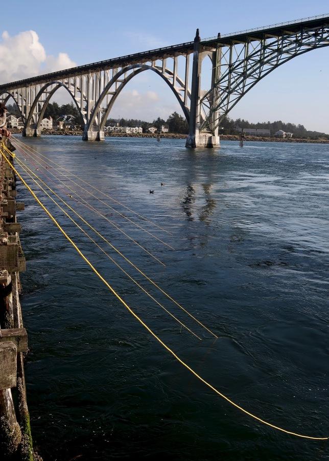 Crabbing in Newport