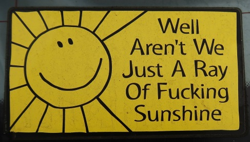 Fucking Ray of Sunshine Bumpersticker