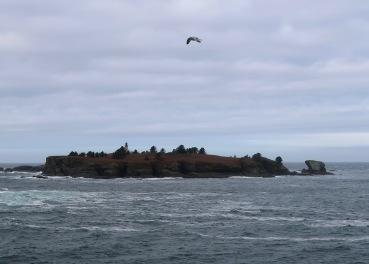 Tatoosh Island, WA