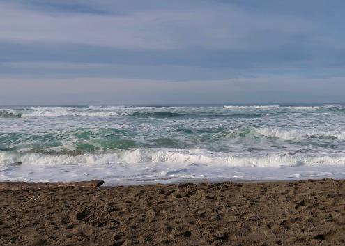 Sunny Taft Beach