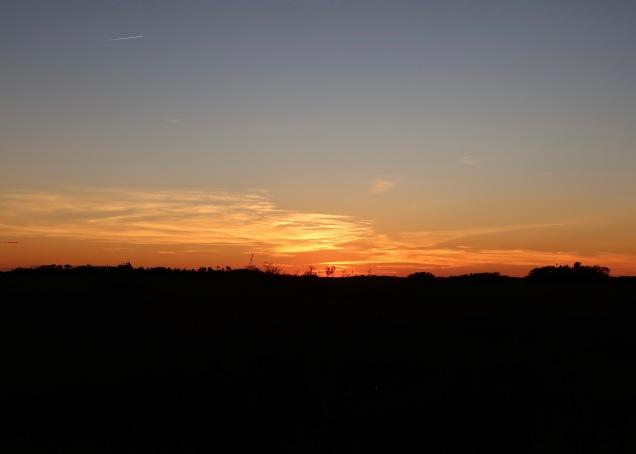 Sawgrass Prairie Sunset