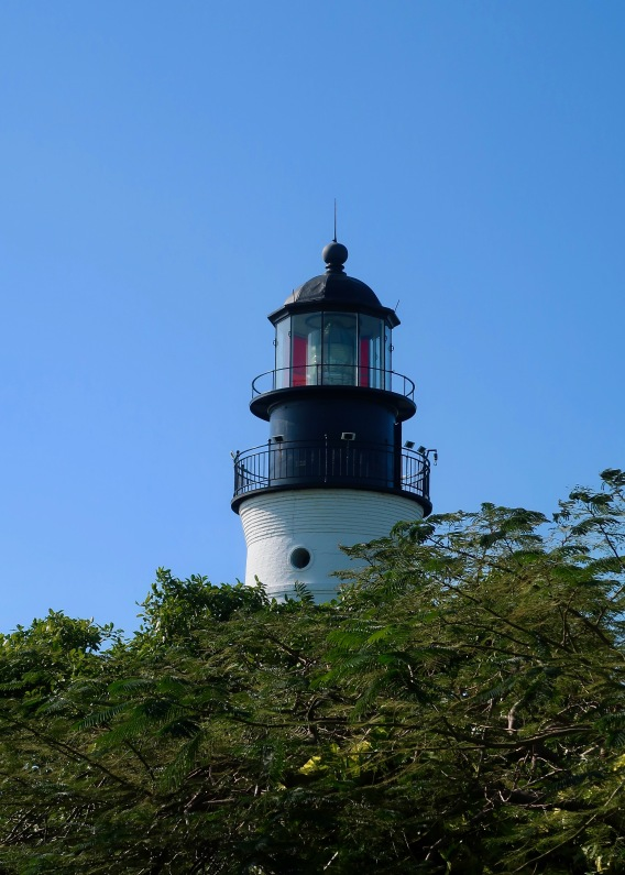Key West Lighthouse from Hemingway's Backyard