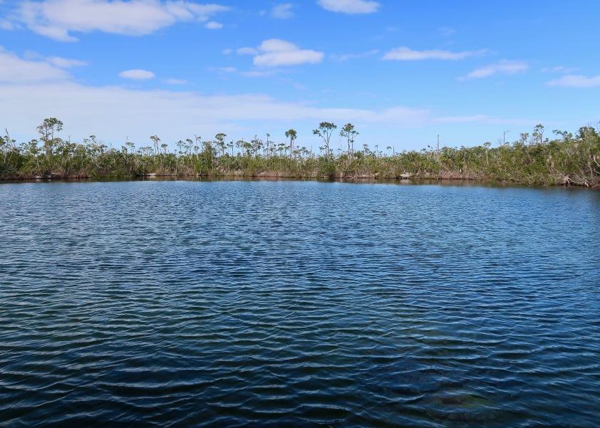 Blue Hole, Freshwater