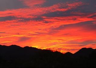 Tucson, AZ November 2010