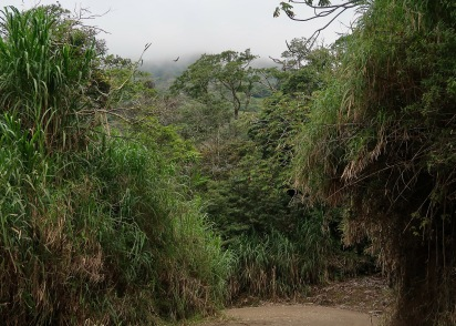 Road into Santa Elena