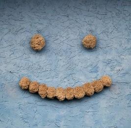 Silk Sponge Art